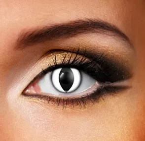 Eye Fusion One Day use. WHITE CAT Coloured Eye Contact Lenses