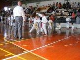 Hinode_karate_kazincbarcika_2014_001012