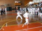 Hinode_karate_kazincbarcika_2014_001035