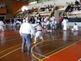 Hinode_karate_kazincbarcika_2014_001054