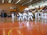 Hinode_karate_kazincbarcika_2014_001080