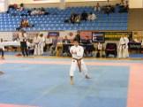 Hinode_Karate_Danok_2014_18