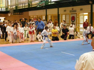 Hinode_IpponShobu_karate_2014_12