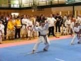 Hinode_IpponShobu_karate_2014_29