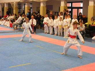 Hinode_karate_fujinaga_2014_020