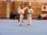 Hinode_karate_fujinaga_2014_048