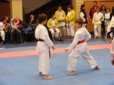 Hinode_karate_fujinaga_2014_058