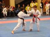 Hinode_karate_fujinaga_2014_059