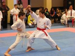 Hinode_karate_fujinaga_2014_089