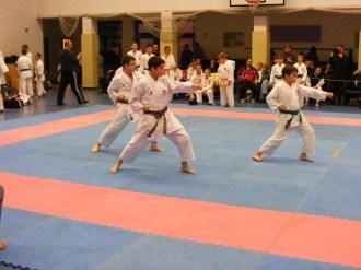 Hinode_karate_fujinaga_2014_101