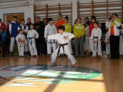 hinode_karate_Hodos_kupa_011