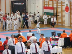 hinode_karate_diakolimpia_2015_10
