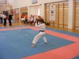 hinode_karate_diakolimpia_2015_17