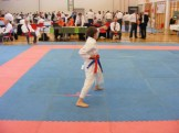 hinode_karate_diakolimpia_2015_19