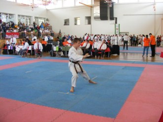 hinode_karate_diakolimpia_2015_53