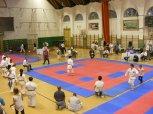 Hinode_karate_SKI_2015_Szerencs_91