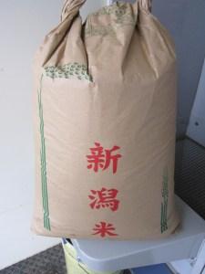 コシヒカリ新米