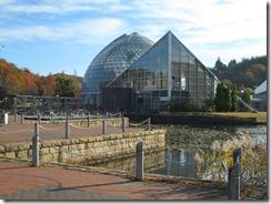 県立植物園11月3