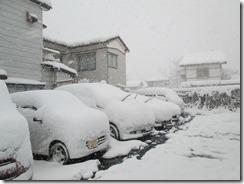 1月24日駐車場