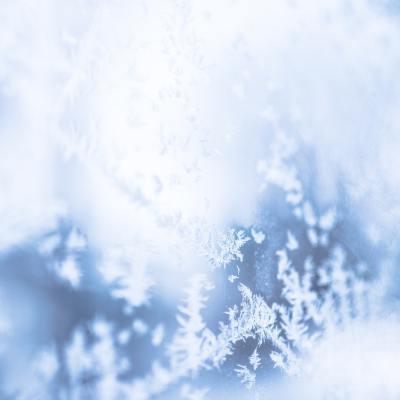 Last Day of the Season – December 23