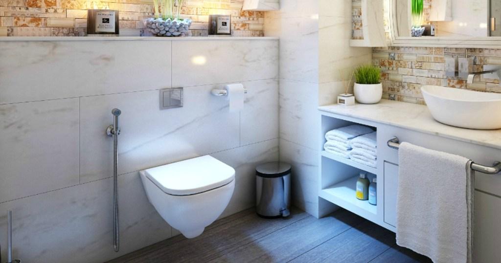 bidet toilet in bathroom