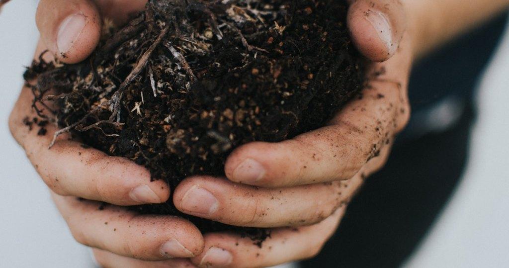 hands holding dark brown fertilizer soil