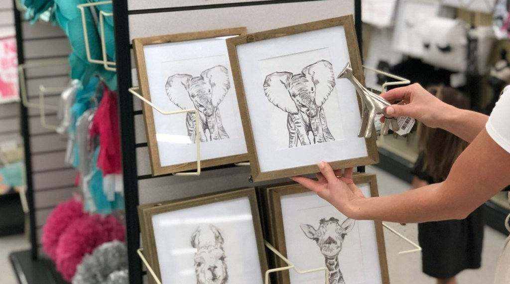 hand holding a framed elephant picture with other animal photos in the background