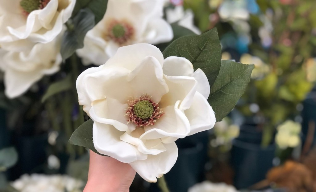 large white magnolia flower with florals in background