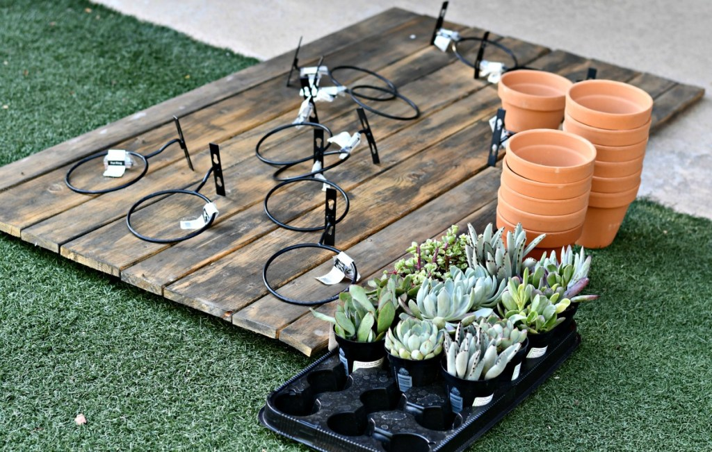 supplies needed for hanging pot succulent wall