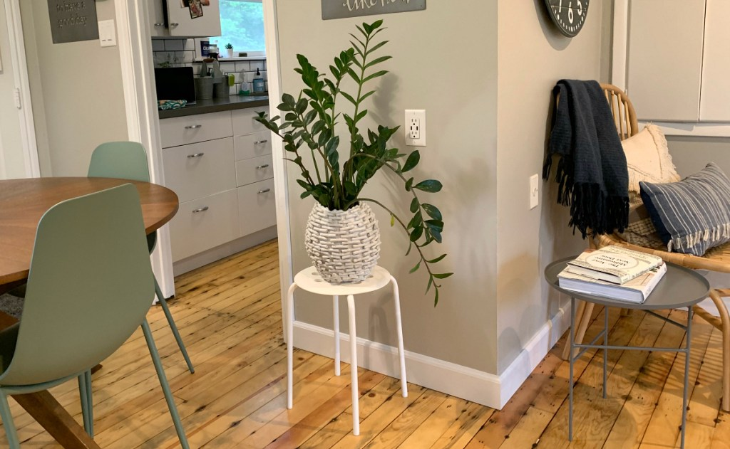 white stool with plant
