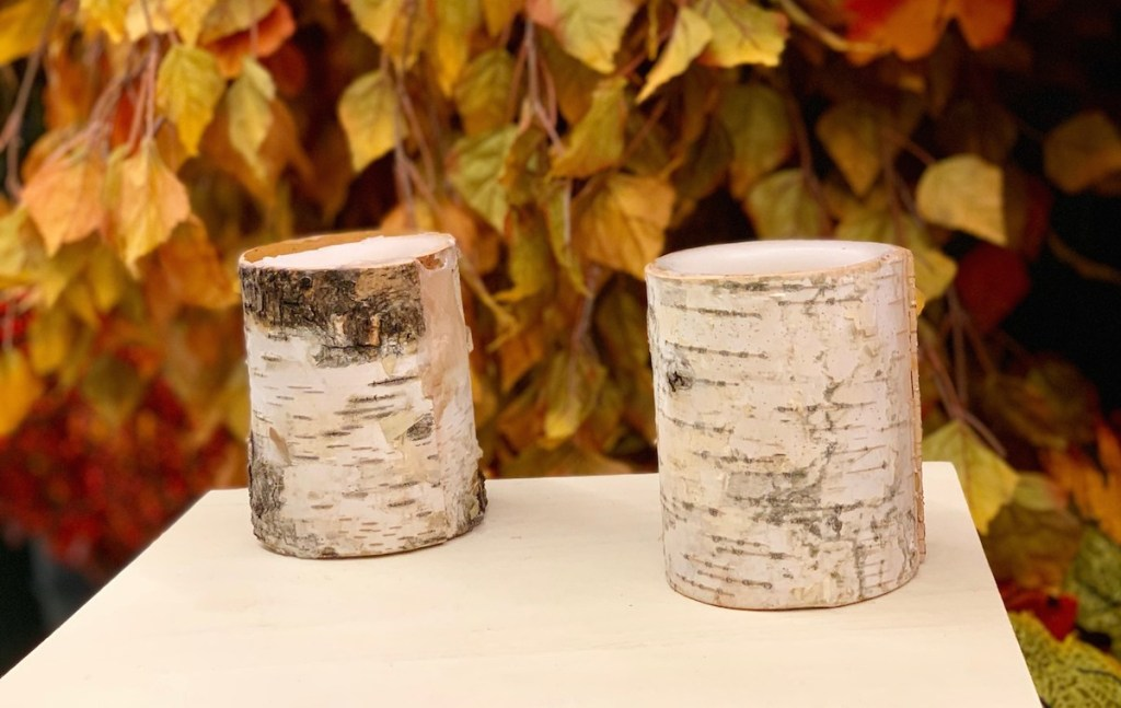 two birch candles sitting on table with leaves in background