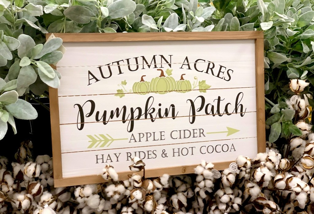 pumpkin patch wood wall sign surrounded by green leaves and cotton