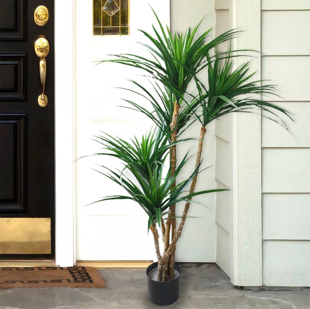 yucana artificial tree by front door