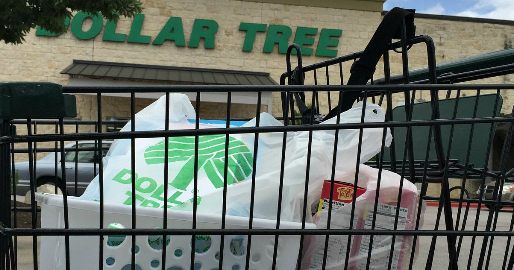 15 items to buy at dollar tree and 10