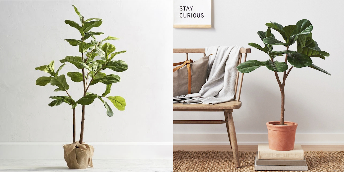 pottery barn and target copycat items – faux fiddle leaf trees