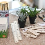 Ruler Succulent Planter Teacher Appreciation Gift Idea