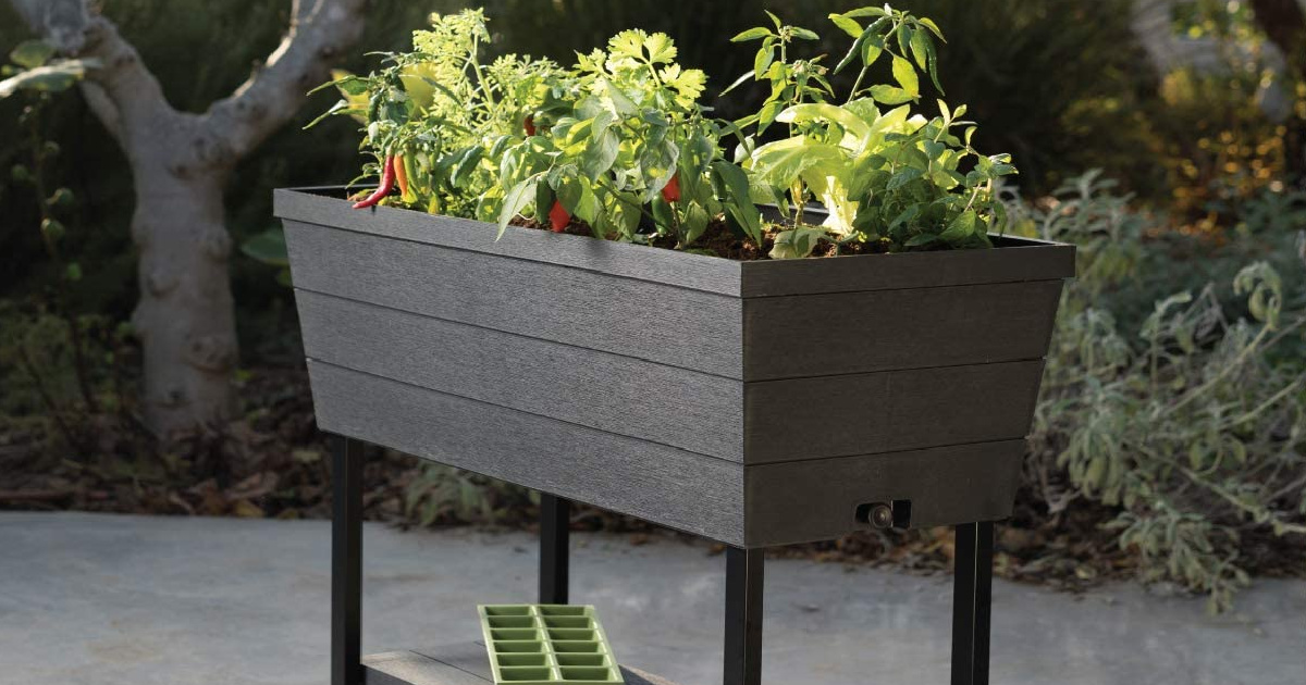 keter raised garden bed only 69 98 on