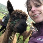 Hip2trek and alpaca share a selfie