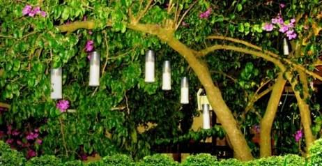 Modelos de jardins (1)