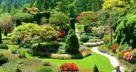 Modelos de jardins (7)