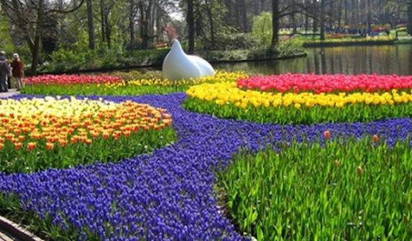Modelos de jardins (9)