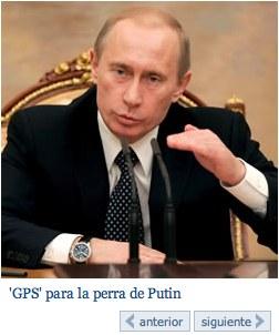 La Perra De Putin