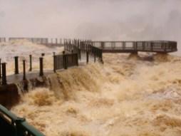 Cataratas del Iguazú 8