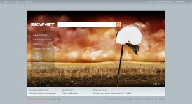 Skynet-Bing