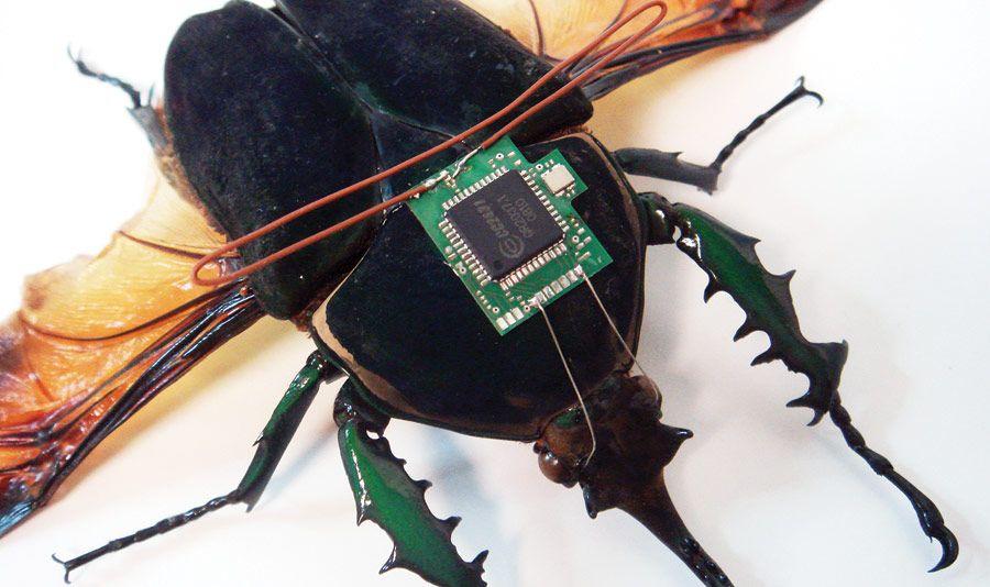Escarabajo controlado por control remoto