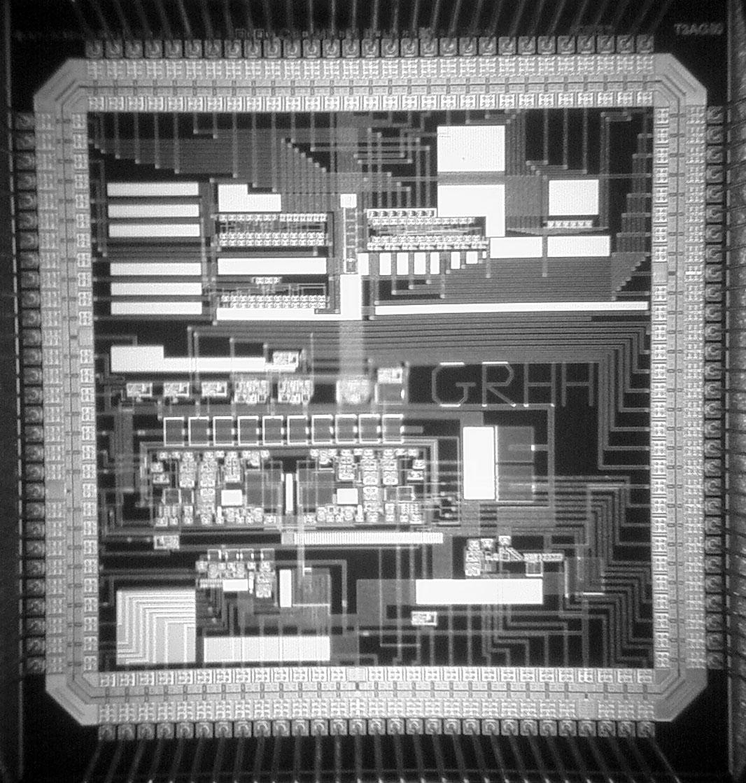 Chip cerebral MIT
