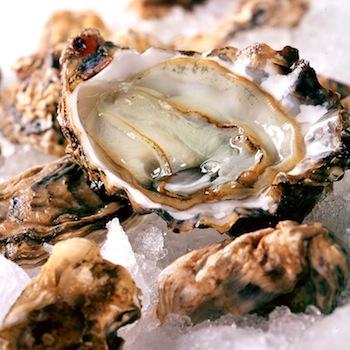 Genoma de la ostra