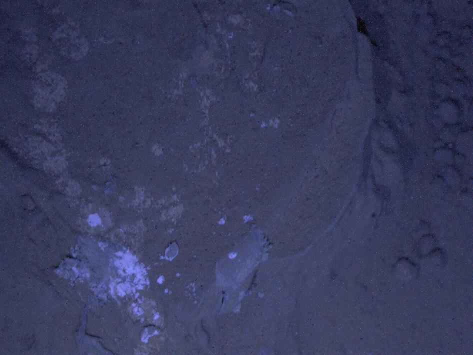 Curiosity captura Marte en la noche