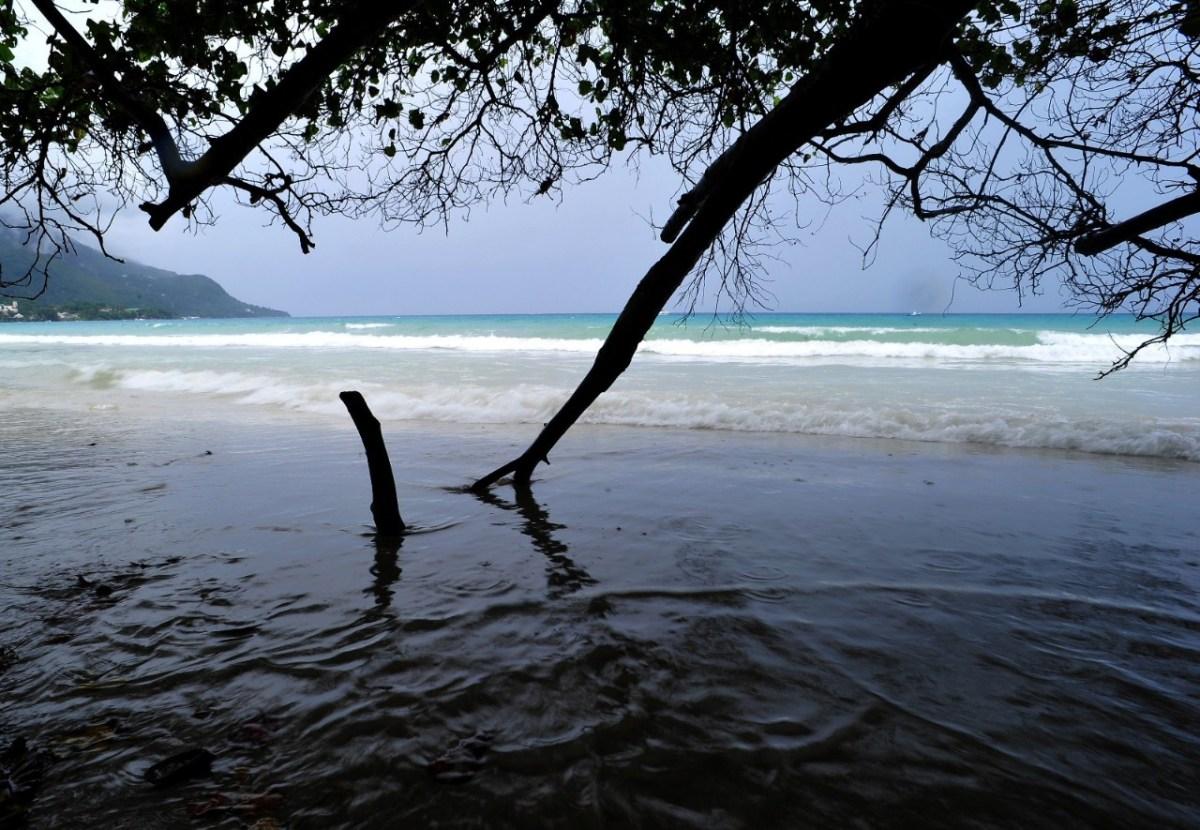 Mauritia: encuentran restos del continente perdido bajo el Océano Índico
