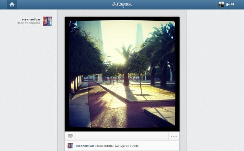 feed instagram web